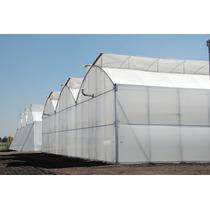 Invernaderos Casa Sombras Proyectos Llave En Mano