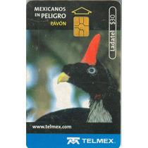 Tarj Pavon Mexicanos En Peligro De Extincion Chip Gem 2