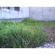 Terreno Plano Listo Para Construir En Boca Del Rio, Ver.