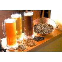 Cerveza Artesanal Aprende A Hacer Cerveza En Casa Nuevo Kit