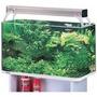 Pecera Azoo Acrilico Nature Aquarium 90 Cms