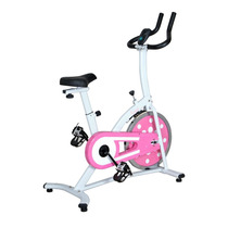 Bicicleta Fija Estatica Sunny Health And Fitnes Vv4