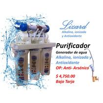 Filtro Purificador Agua Alcalina, Ionizada Y Antioxidante