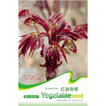 50 Semillas Toona Sinensis Caoba China Brotes Gourmet