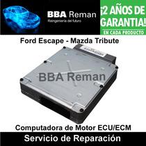 Ford Escape Mazda Tribute 1997 2004 Ecm Ecu Pcm Reparacion