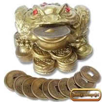 Rana De La Buena Suerte Con Monedas Chinas