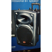 Bafle Bocina Amplificada 12 Bluetooth, Fm, Usb, Recargable