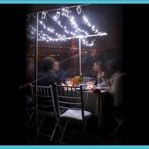 Serie 30 Leds Luz Brillante Para Decorar Bodas Y Fiestas