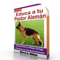 Como Educar A Un Perro Pastor Aleman - Videos Paso A Paso