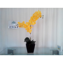 Arreglo Floral Orquídea Mn4