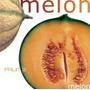 100 Semillas De Cucumis Melo - Melon Codigo 380