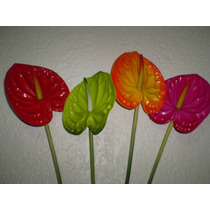 Anturio Flor Artificial
