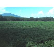 Se Venden Lotes (hectáreas, Terreno) En Yuriria, Gto.