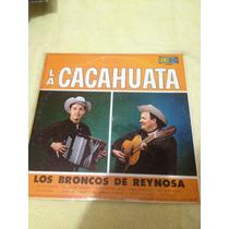 Los Broncos De Reynosa La Cacahuata