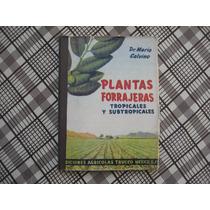 Mario Calvino, Plantas Forrajeras, Tropicales Y