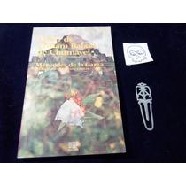 Libro De Chilam Balam De Chumayel Mercedes De La Garza