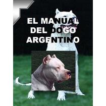 Dogo Argentino Conocelo + Educacion Y Adiestramiento ¡¡