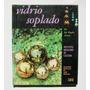 J. Rogelio Alvarez Vidrio Soplado Libro Mexicano 1969