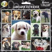 Pegatinas Del Perro - Labrador Retriever X27 Amantes Regalo