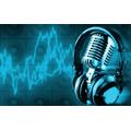 Spots De Radio Y Perifoneo 100% Profesional