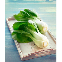 10 Gramos Semilla Brassica Rapa - Pak Choy O Pak Choi Canton