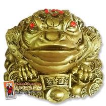 Rana De Feng Shui - Para Abundancia Y Prosperidad