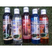 Veterinarios Paquete Cinco Shampoos Surtidos Bioma. Remate