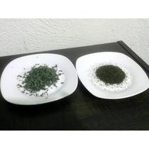 1 Kg Té Verde Sencha O Té Negro Chino Keemun+envío Por Dhl