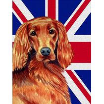 Irish Setter Inglés Con Union Jack Británica Bandera De La