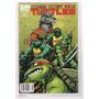 Teenage Mutant Ninja Turtles # 2 - Idw - Editorial Bruguera