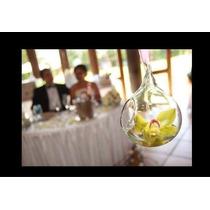 Esfera Cristal Gota Terrario Colgante Para Bodas Paq 10 Pzas