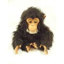 Chimpace Fur Real