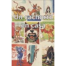 Un Cachorro En Casa ¿ Amaestrear Perros - Ian Dunbar Libro