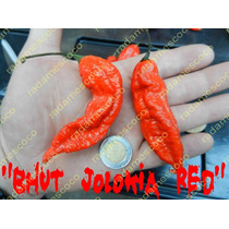 Semillas De Chile Bhut Jolokia Red (chile Fantasma)