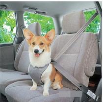Arnes Chaleco Pechera Cinturon Seguridad Auto Perro Gato E4f