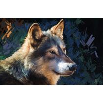 Cuadro Decorativo - Animales - Diseño 1,2,3 Y 5 Piezas