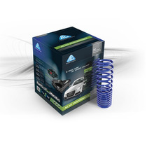Resortes Ag Kit Performance Platina Y Clio 2002 A 2008 Fdp