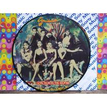 Garibaldi Lp Foto Disco , Picture Disc,los Hijos De Buda Nvo