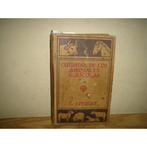 Caballos, Vacas - Cuidado De Los Animales Agrícolas - 1921