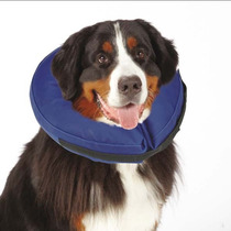 Collar Inflable Con Correa Perros Gatos X Grande Isabelino