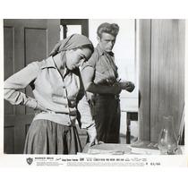 Fotografia Original Elizabeth Taylor James Dean Giant 1956