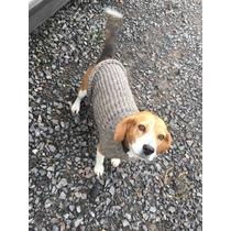 Suéter De Lana Para Perro Mediano Mascotas