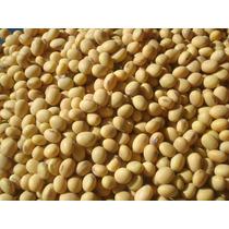 1 Kg Semillas De Soya O Soja - Glycine Max Organica Cod. 157