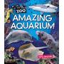 Amazing Aquarium, Terry Jennings