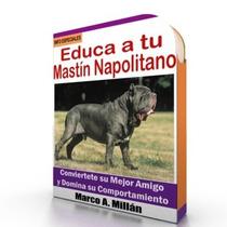 Guía De Entrenamiento Para Perro Mastin Napolitano