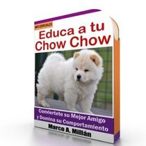Como Educar A Un Chow Chow - Guía De Adiestramiento Raza