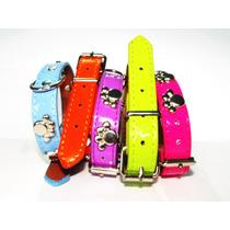 Collar Mascotas Perro Gato Conejo Uron Con Cascabelito