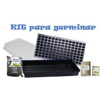 Kit De Germinacion De Semillas - Hidroponia - Sustrato
