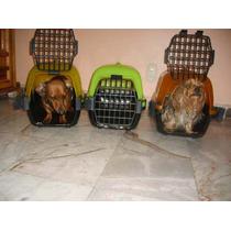 Jaula Transportadora Para Tu Mascota D.f Y Republica Mexican