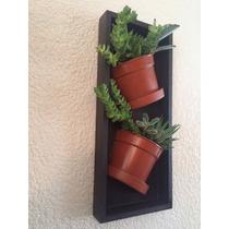 Cuadro Decorativo Con Macetas Sembradas Con Plantas Naturale